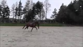 video of Dohnanyi