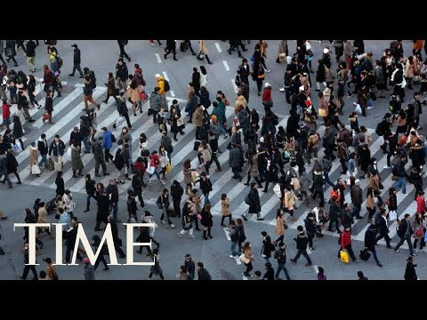 The World's Population Is Forecasted To Reach 9.8 Billion By The Year 2050