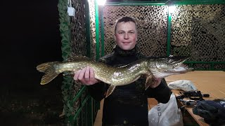 Рыбалка. Ловля щуки и окуня осенью.Подводная охота.Подводная охота осенью.Ночная подводная охота.