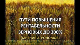 Рентабельность зерновых 300%