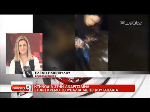 Κτηνωδία στην Ανδρίτσαινα | 20/02/19 | ΕΡΤ