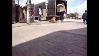 preview picture of video 'Romeo en La Gaitana de Suba'