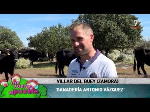 Me vuelvo al pueblo (154/ Parte 1).- Villar del Buey, Zamora