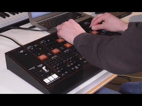 ARP Odyssey by KORG: Duophonic Synthesiser Module (KORGANTUAN )