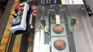 This Is What An Industrial Egg Breaking Mechanism Looks Like - Part 2