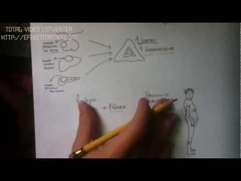 Fiziotenz e tosse