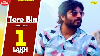 Tere Bin | Anurag Sharma, Manisha Rathore | New Hindi Bollywood Song 2020 | Sonotek