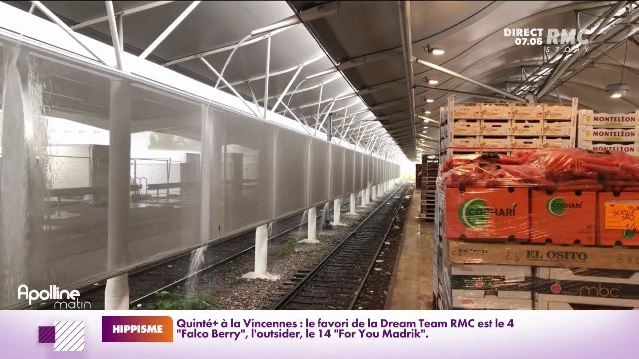 Le train des primeurs qui relie le marché de Rungis à Perpignan est remis en circulation