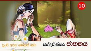 චන්දකින්නර ජාතකය | Shraddha  TV