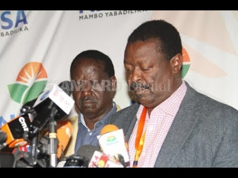 Raila Odinga, Kalonzo Musyoka to be sworn-in after postponement of ceremony