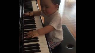 周汶錡囝囝 : 👶🏻小小鋼琴家