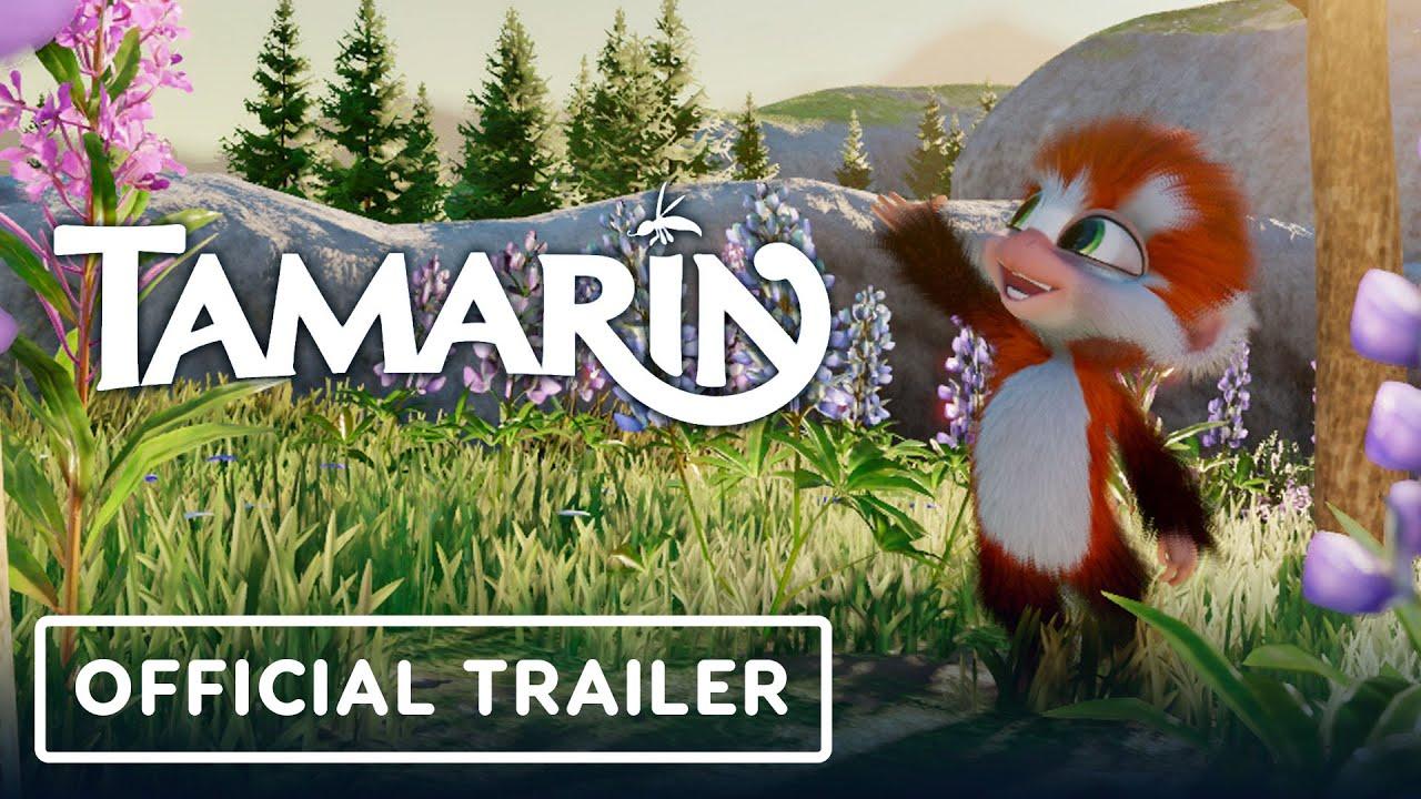 3D冒險遊戲《Tamarin》宣佈將於9月10登陸PS4/Steam平台,晚些時候登陸Xbox One。本作中玩家將扮演一隻可愛的小猴子。 Maxresdefault