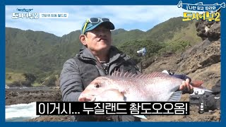 City Fishers 2 EP13