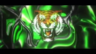 Tiger Intro #BEST INTRO EVER #60Fps + download