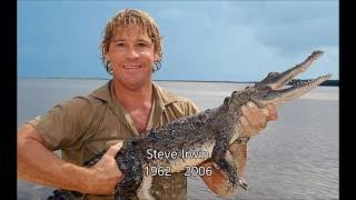 Ten years ago - the day the Crocodile Hunter died.