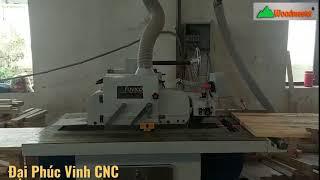 Máy Ripsaw lưỡi trên | WM-365 cưa rong cạnh Trung Quốc chất lượng cao