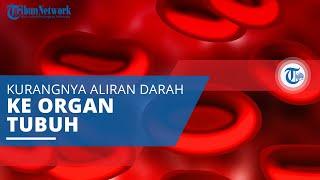 Iskemia, Kurangnya Aliran Darah ke Organ Tubuh Tertentu yang Berakibat Kurangnya Kadar Oksigen