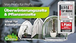 2. Winterschutz für Kübelpflanzen wie Olivenbaum und Palmen | BioGreen