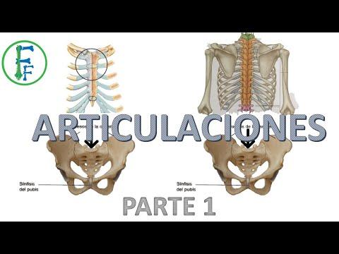 Cum se tratează articulațiile artroase