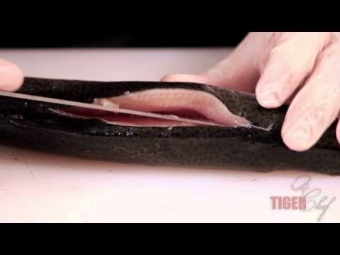 Fillet Knives - How to Use