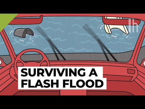 Here's Everything You Need To Know To Survive A Flash Flood