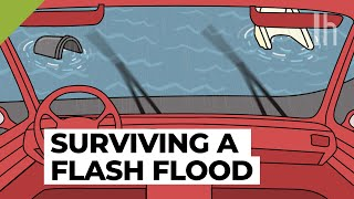 Everything You Need to Know During a Flash Flood