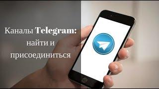 Как найти и подписаться на канал в Телеграмме