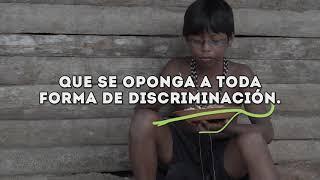 Querida Amazonia: el sueño social del Papa