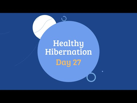 Healthy Hibernation Cover Image Day 27.