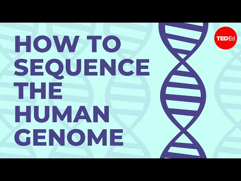 A Crash Course In How Genomes Are Sequenced