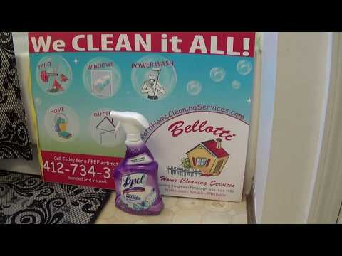 Lysol Foaming Mold and Mildew Remover with Bleach