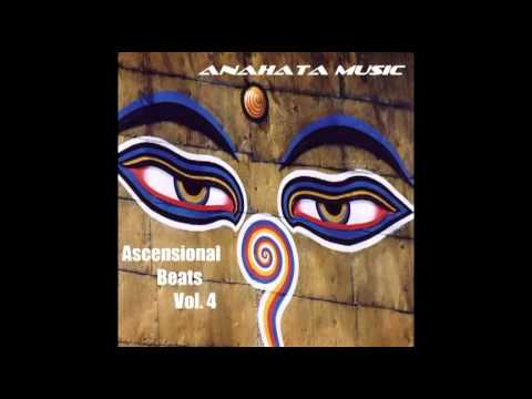 Anahata Music - Shape The Future