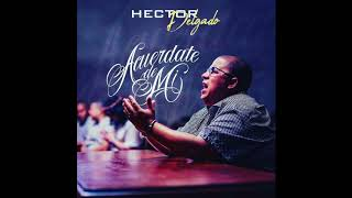 Acuerdate de Mi (Audio) - Hector El Father  (Video)