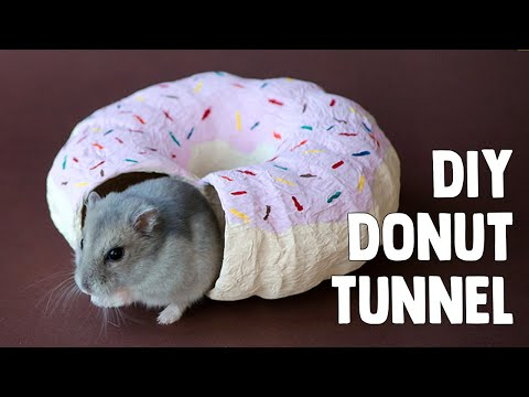 Frosted Donut Tunnel | DIY Hamster Toy - xemphimtap com