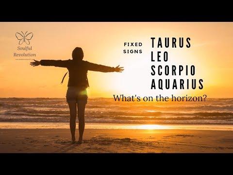 New love *rushes in* Fixed Signs TAURUS LEO SCORPIO AQUARIUS