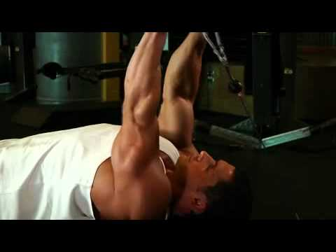 Cable Lying Triceps Extension Exercise Guide and Video