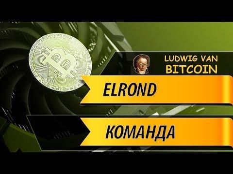 КОМАНДА ПРОЕКТА ELROND NETWORK