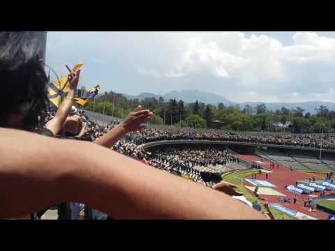 """""""Pumas vs América La Rebel Fin del partido 08/05/16"""" Barra: La Rebel • Club: Pumas"""