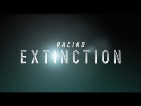"""Racing Extinction"" Official Trailer"