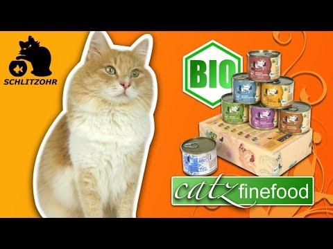 🔥Katzenfutter Test: CATZ FINEFOOD BIO | #KatzenfutterTest | No. 2