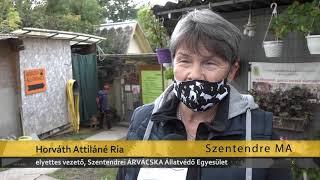 Szentendre Ma / TV Szentendre / 2020.09.30.