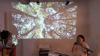 植物音楽の動画公開