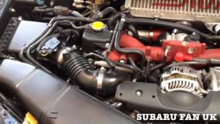 WHERE TO FIND VIN CHASSIS NUMBER ON SUBARU WRX STI IMPREZA