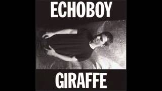 echoboy - wasted spaces