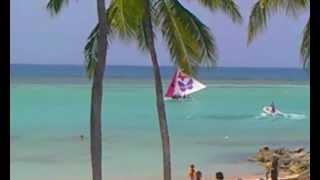 preview picture of video 'REGATE FEMININE 2012 -  ST FRANCOIS EN GUADELOUPE'