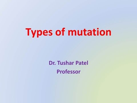 What are the various types of mutation