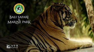 Bali Safari & Marine Park, Wisata Edukasi untuk Anak