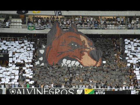 """""""Torcida do Botafogo: Botafogo x Colo Colo"""" Barra: Loucos pelo Botafogo • Club: Botafogo"""