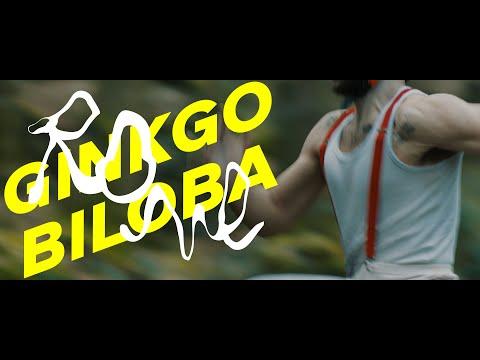 GINGKO BILOBA