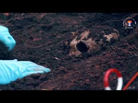 What is Forensic Anthropology? - YouTube